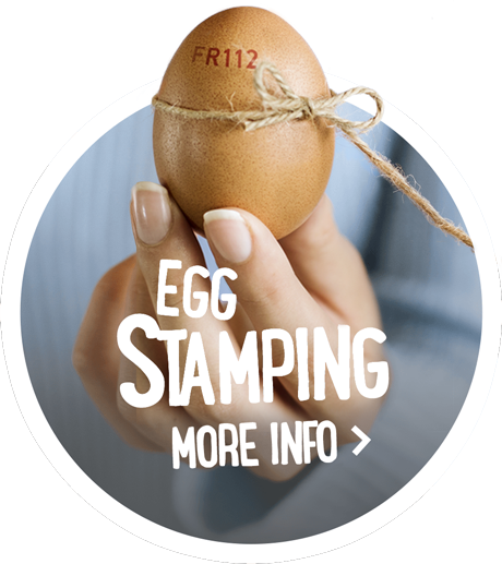 Egg stamping - more info